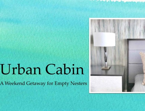Urban Cabin – Peek at a Project