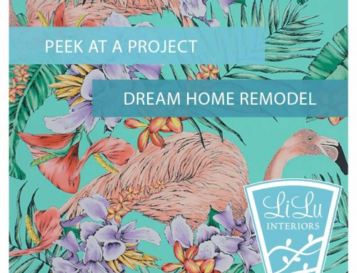 LiLu Interiors Peek at a Project: St. Paul Dream Home Remodel
