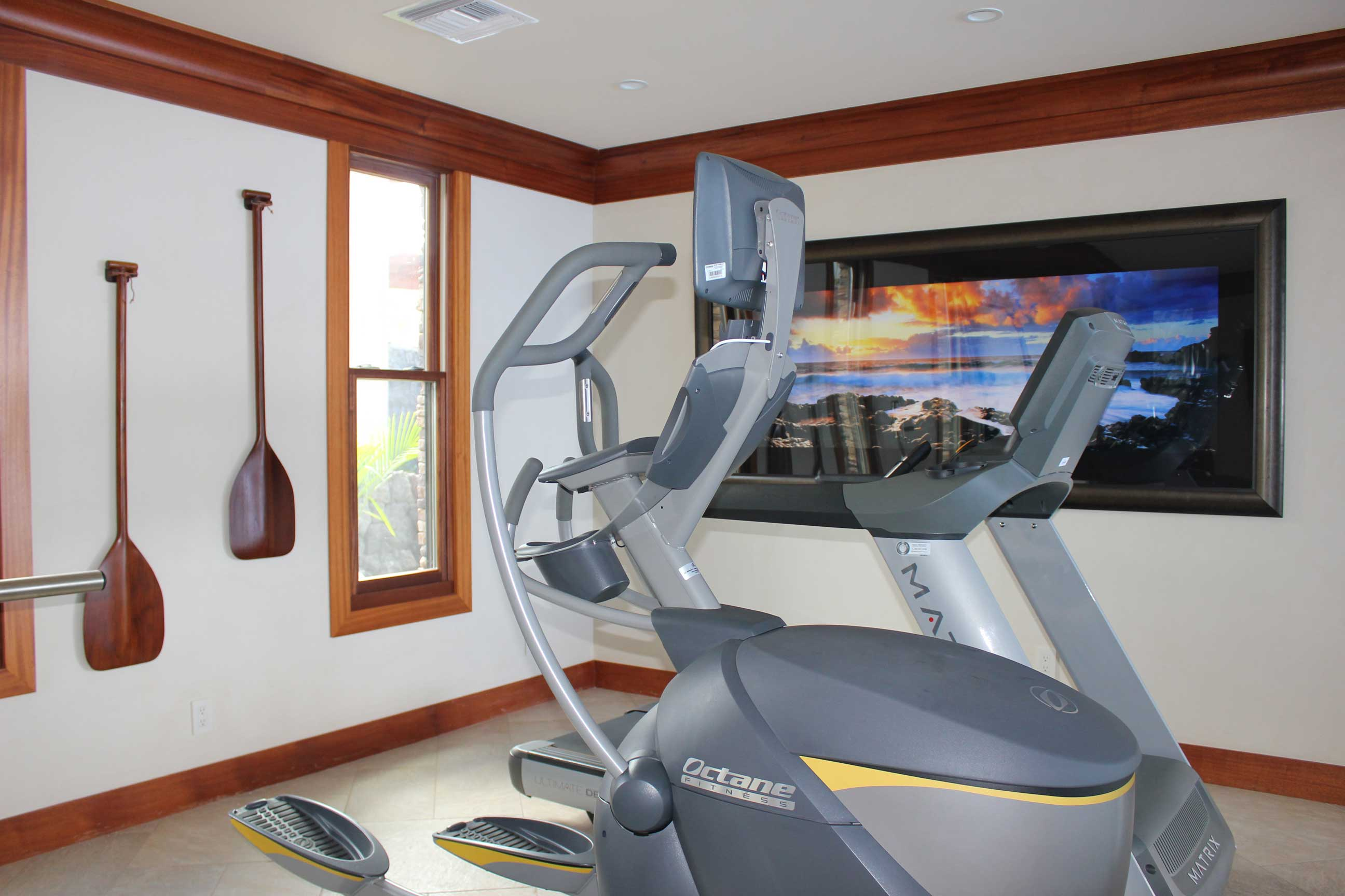 exercise-room-new-years-resolutions-interior-designer-minneapolis.jpg