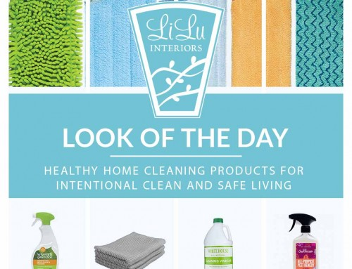 Shop the Look of the Day- Healthy Home Cleaning Products for Intentional Clean and Safe Living