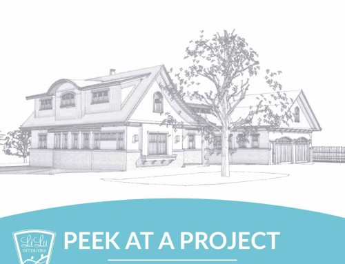 Charming Lake Home: LiLu's Peek at a Project