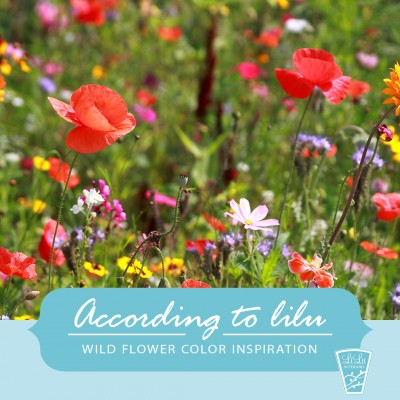 wildflower-color-inspiration-according-to-LiLu-Interiors-Minneapolis.jpg
