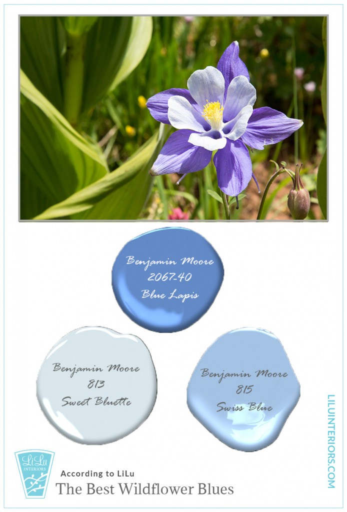 wildflower-blues-color-inspiration-interior-designer-minneapolis.jpg