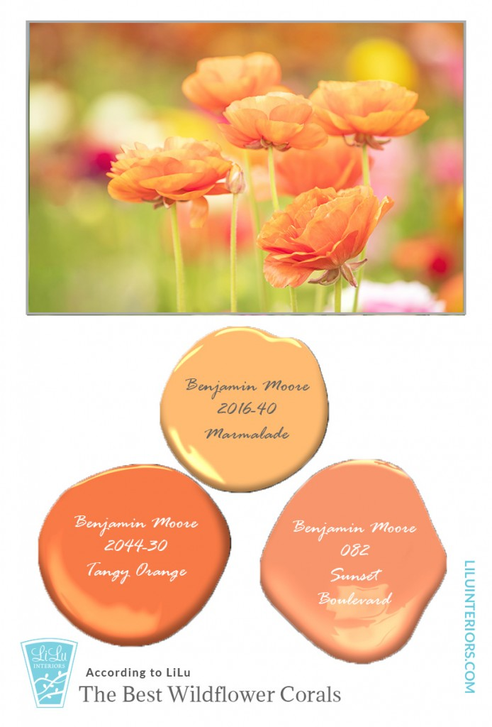 wildflower-color-inspiration-coral-interior-designer-minneapolis.jpg