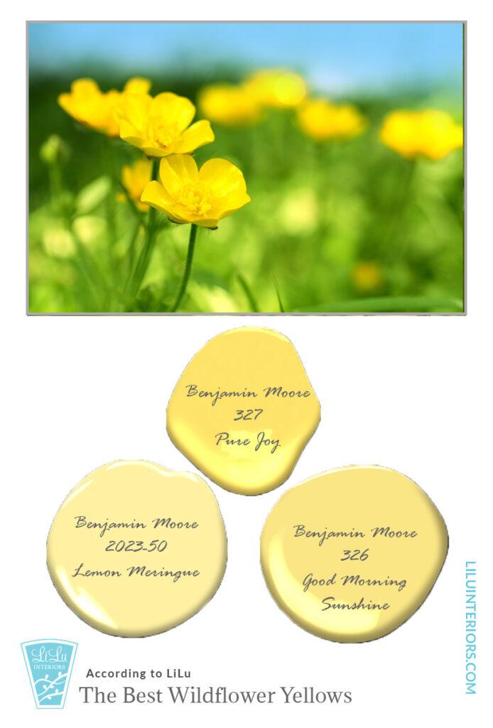 wildflower-color-inspiration-yellow-interior-designer-minneapolis.jpg