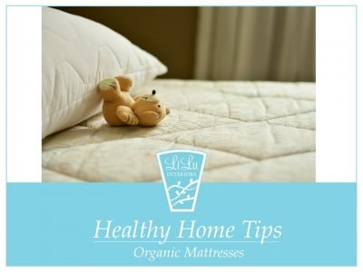 Organic-Mattresses-Minneapolis-Minnesota-Interior-Designer.jpeg