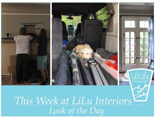 A Look into Our Week- LiLu's Look of the Day