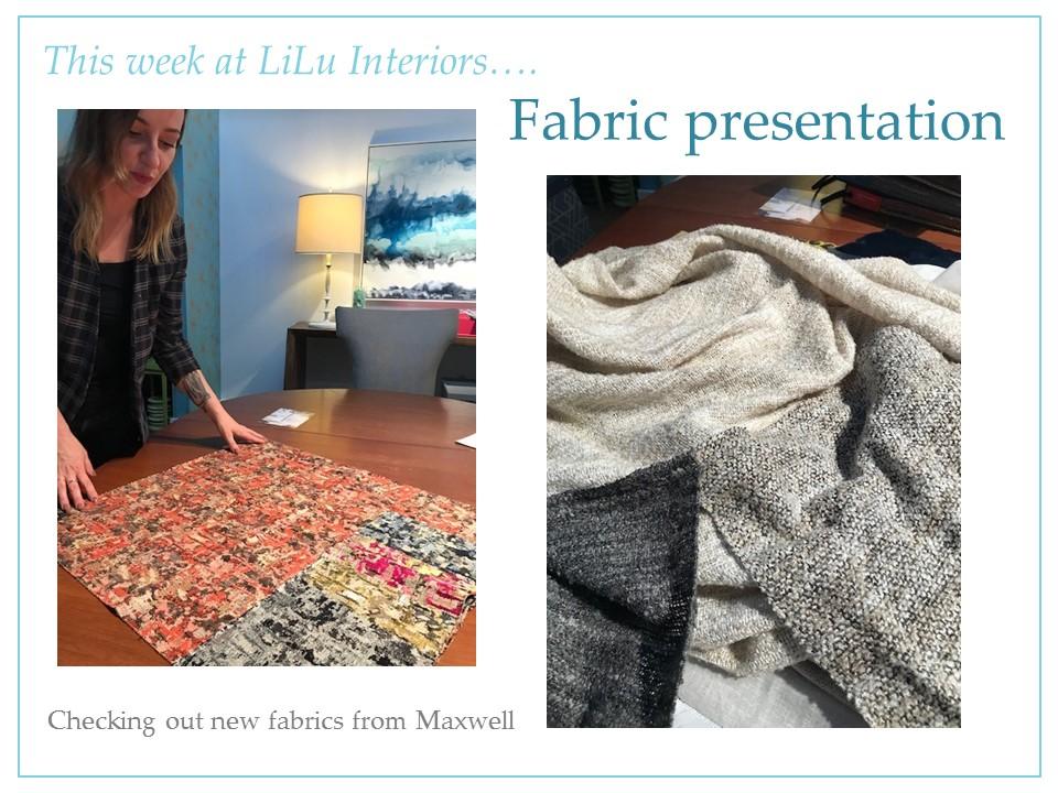 interior-designer-fabric-presentation-55405.jpg