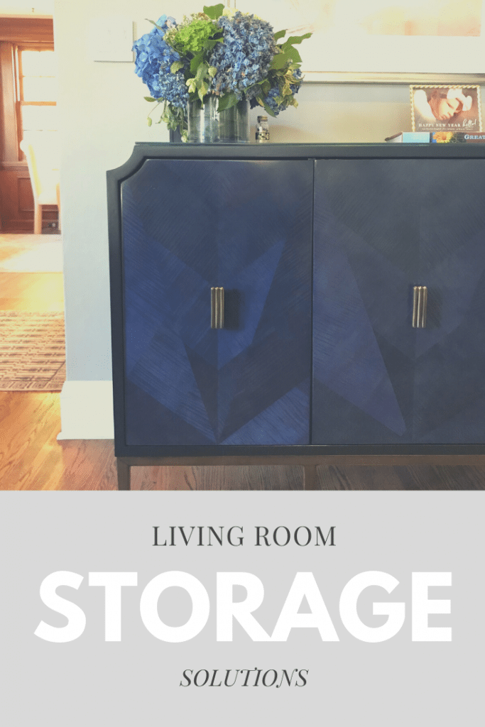 beautiful-and-functional-storage-solutions-for-living-room-minneapolis-interior-design-55405.jpeg