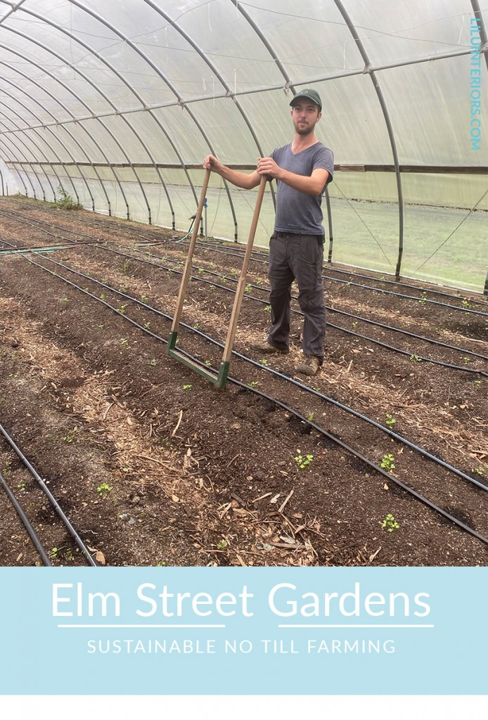 Learning about broadfork, no till farming at Elm Street Gardens at Designer Experience CLICK TO READ MORE #interiordesigner #interiorinspiration #interiordesignideas #ecofriendly #lowwasteliving